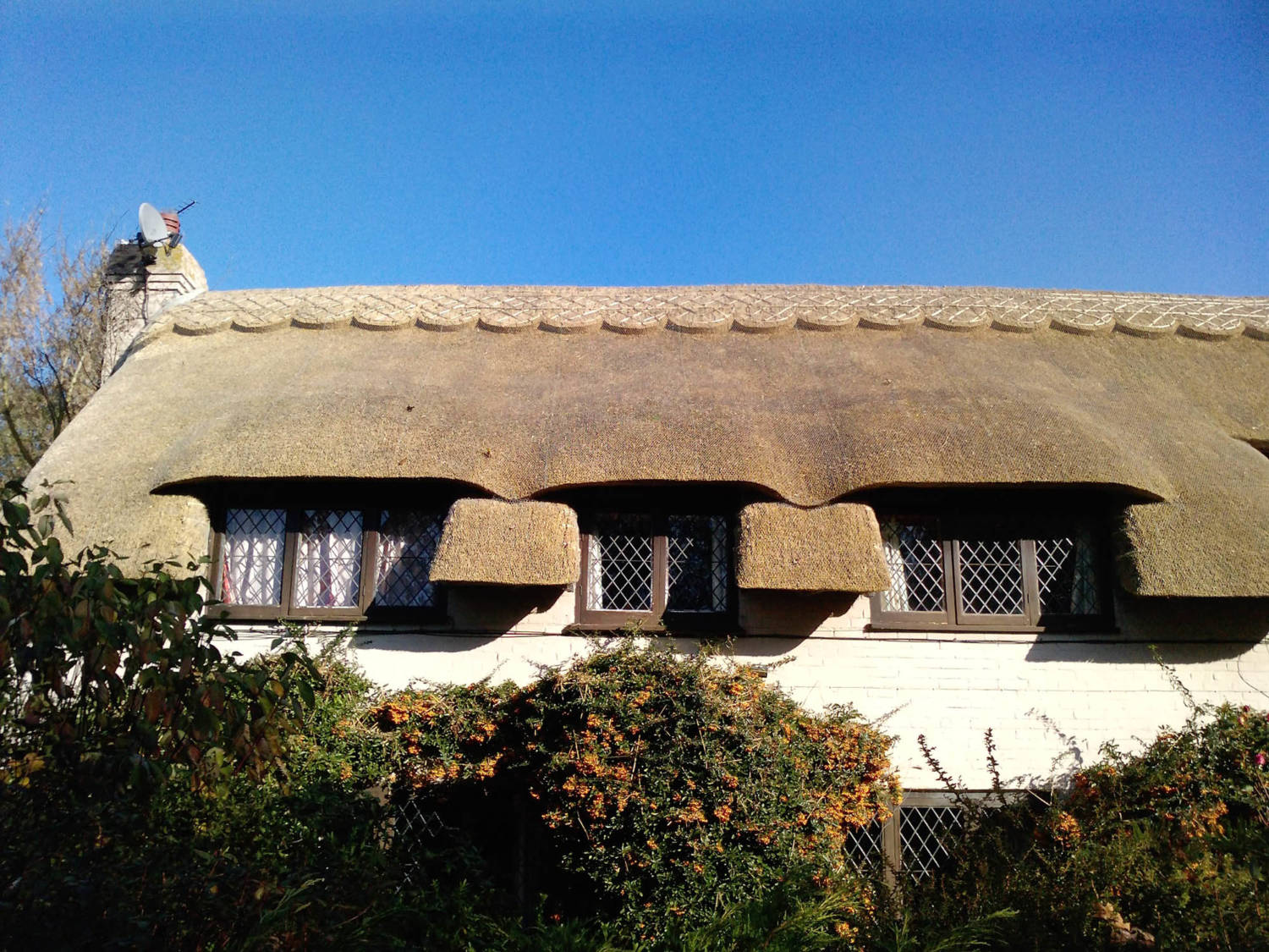Thatched_Roof_Marshside