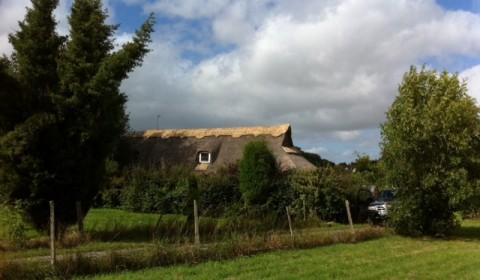 Ridge repair in Sevenoaks